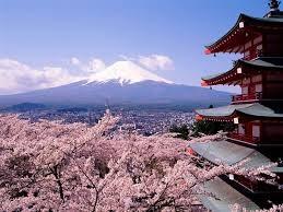 Thủ tướng Nhật Bản Shinzo Abe có thể hoãn thời điểm tăng thuế