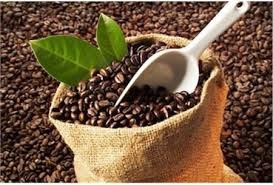 Giá cà phê kỳ hạn tại NYBOT sáng ngày 5/8/2016