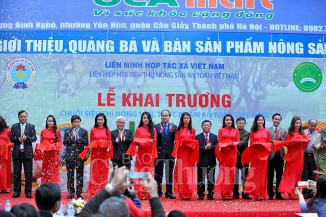 Khai trương chuỗi siêu thị nông sản, thực phẩm an toàn Việt Nam