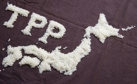 Nhật Bản sẽ hồi sinh TPP mà không cần Mỹ?