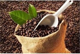 Giá cà phê kỳ hạn tại NYBOT sáng ngày 6/6/2017