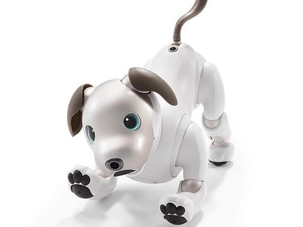 Sony tái sinh robot cún cưng 'Aibo' để đón chào năm Tuất 2018