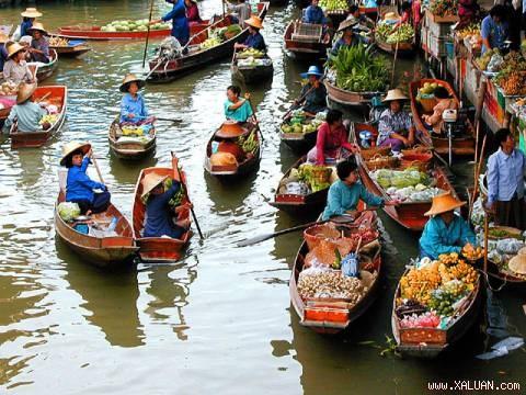 Diện tích vườn cây ăn trái Đồng Bằng Sông Cửu Long đạt chứng nhận GAP rất thấp