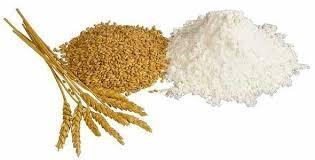 Giá lúa mì Nga tăng do lo ngại sản lượng Tây Âu giảm