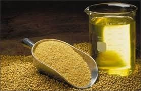 Giá dầu đậu tương tại Mỹ tăng gần 7%