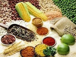 USDA nâng triển vọng đối với nguồn cung đậu tương, ngũ cốc toàn cầu