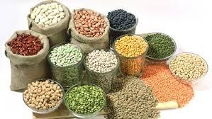 EU hạ dự báo sản lượng ngũ cốc do hạn hán tại Tây Ban Nha