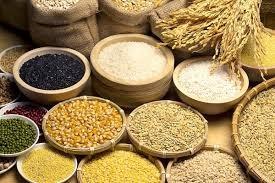 Trung Quốc sẽ bãi bỏ thuế VAT đối với nhập khẩu ngũ cốc sấy khô (DDGS)