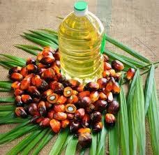 Giá dầu cọ tại Malaysia giảm do hoạt động bán ra chốt lời