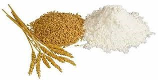 Giá lúa mì Nga tăng do thời tiết khu vực Biển Đen khô