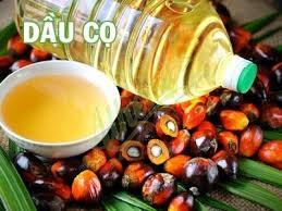 Giá dầu cọ Malaysia cao nhất gần 3 tuần