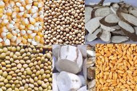Nhập khẩu thức ăn chăn nuôi và nguyên liệu Việt Nam 3 tháng năm 2020 giảm mạnh 18%
