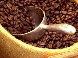 Thị trường cà phê ngày 12+13/02/2014