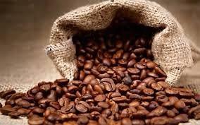 Thị trường cà phê ngày 19/02/2014