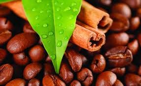 Indonesia: Xuất khẩu cà phê Robusta tăng 15% trong tháng 1/2014
