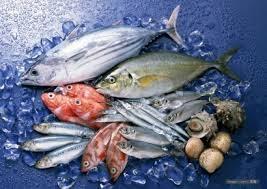 Quy định mới của FSMA cho ngành thủy sản