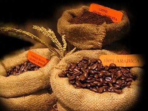 Thị trường cà phê tuần 4 từ ngày 19 - 24/01/2015