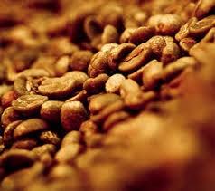 Giá cà phê xấu dần!
