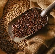 Sản lượng cà phê tại Brazil dự báo giảm xuống 44,57 triệu bao