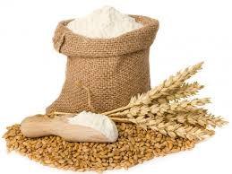 USDA: Dự báo cung cầu lúa mì thế giới niên vụ 2014/15
