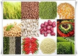Giá hàng hóa nông sản của Trung Quốc giảm