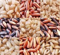 USDA: Dự báo sản lượng và mậu dịch lúa gạo thế giới niên vụ 2014/15
