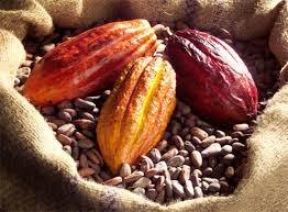 Thị trường cà phê, cacao ngày 27/12