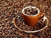 Thị trường cà phê, cacao ngày 18/12: arabica giảm xuống mức thấp hồi tháng 7