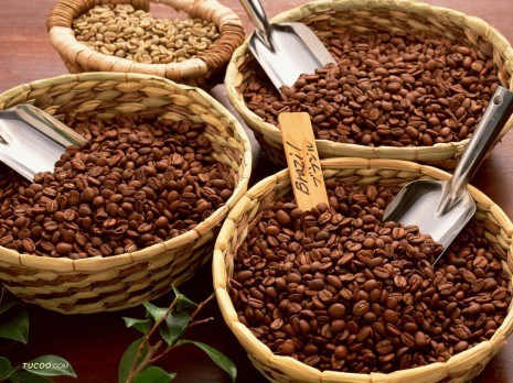 Người chiến thắng trở thành chiến bại do mưa làm hồi sinh cà phê Brazil
