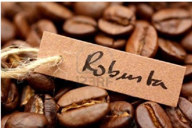 Doanh số bán cà phê Việt Nam chậm lại, xuất khẩu niên vụ 2014/15 giảm