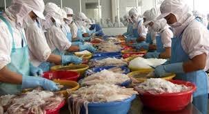 Thị trường thủy sản tuần từ 19 – 23/1/2015