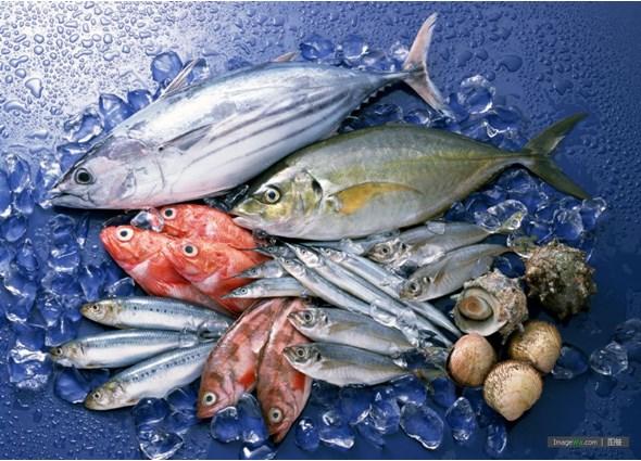Tổng hợp thị trường thủy sản thế giới đến 08/3/2015
