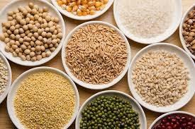 Thị trường ngũ cốc ngày 26/7: Giá đậu tương giảm xuống mức thấp 17 tháng do lo ngại nhu cầu