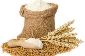 Giá lúa mì ngày 23/3 tăng gần 1% lên mức cao 1 tháng