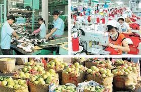 Chủ động nguyên liệu, giảm nguồn cung từ Trung Quốc