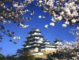 Kim ngạch nhập từ thị trường Nhật Bản tăng 54,6%