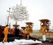 Tháng đầu năm xuất khẩu phân bón giảm cả lượng và trị giá