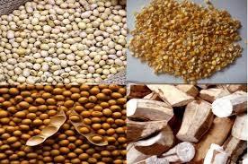 Xuất khẩu thức ăn gia súc và nguyên liệu tiếp tục tăng trưởng