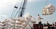 Phân bón nhập khẩu từ thị trường Trung Quốc chiếm 47%