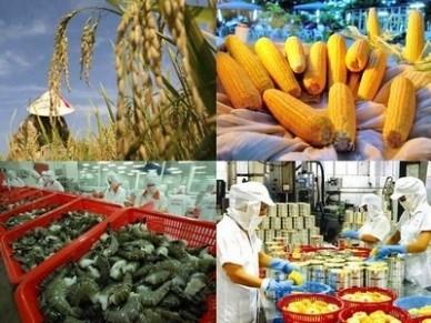 Ai Cập – thị trường xuất khẩu lớn thứ 2 của Việt Nam tại Châu Phi