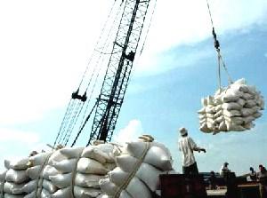 Tháng 11 xuất khẩu gạo sụt giảm ở hầu hết các thị trường