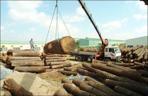 Gỗ và sản phẩm gỗ - nhóm hàng công nghiệp xuất khẩu chủ lực của Việt Nam